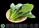 野菜の販売・生産